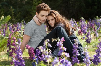 'The Twilight Saga: Breaking Dawn-Part 2' is #1!
